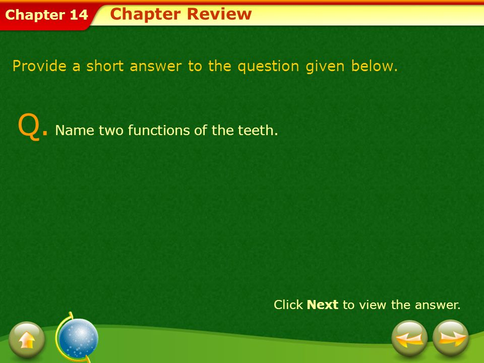 Q. Name two functions of the teeth.