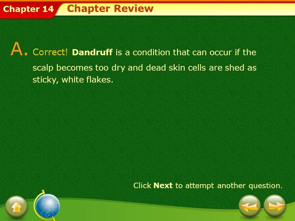 Chapter Review A. Correct! Dandruff is a condition that can occur if the scalp becomes too dry and dead skin cells are shed as sticky, white flakes.