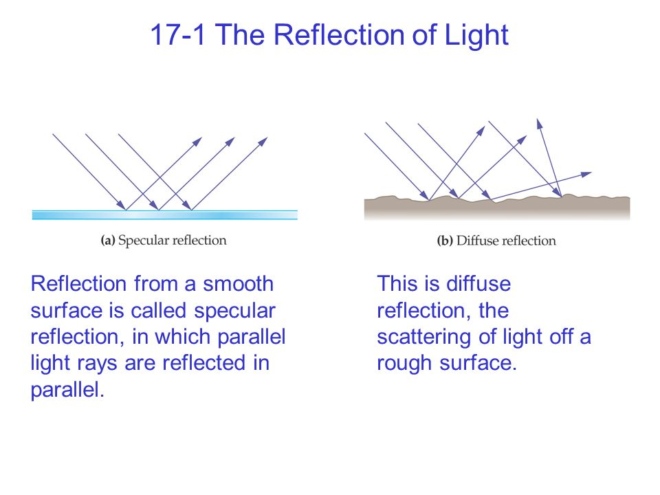 17-1 The Reflection of Light