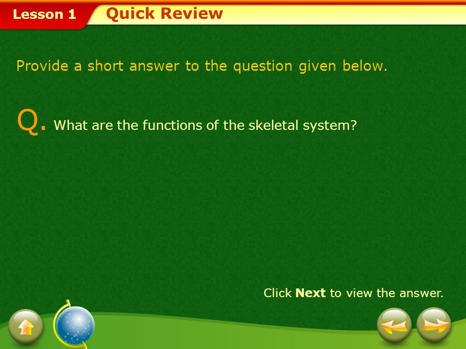 Q. What are the functions of the skeletal system