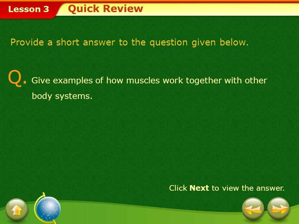 Q. Give examples of how muscles work together with other body systems.