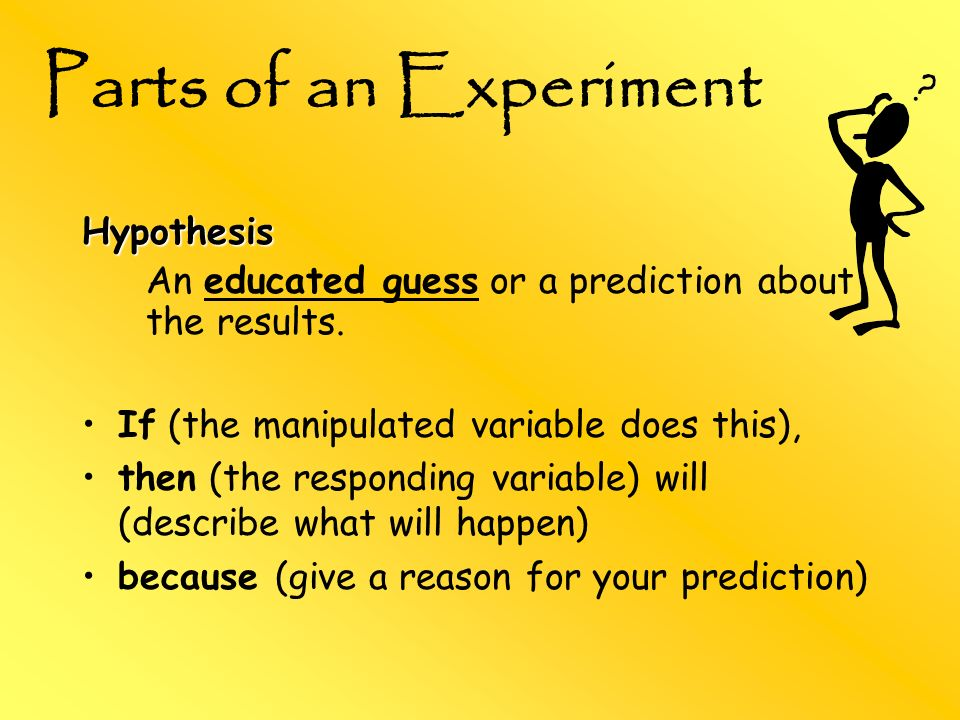 Parts of an Experiment Hypothesis