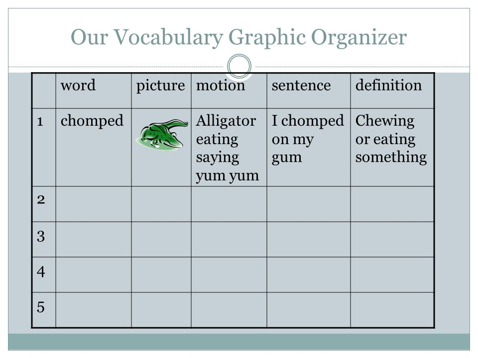 Our Vocabulary Graphic Organizer
