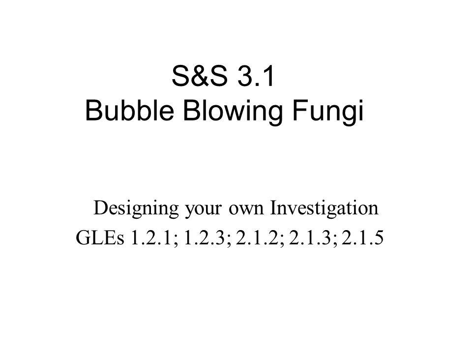 S&S 3.1 Bubble Blowing Fungi