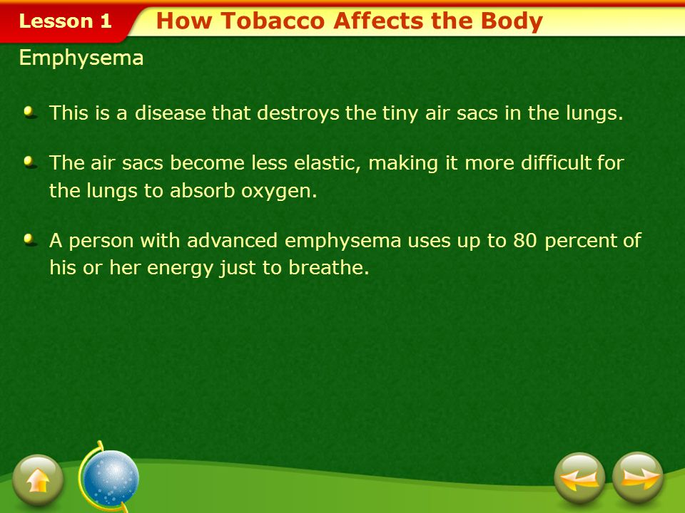 How Tobacco Affects the Body