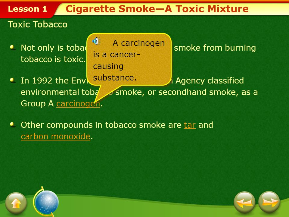Cigarette Smoke—A Toxic Mixture