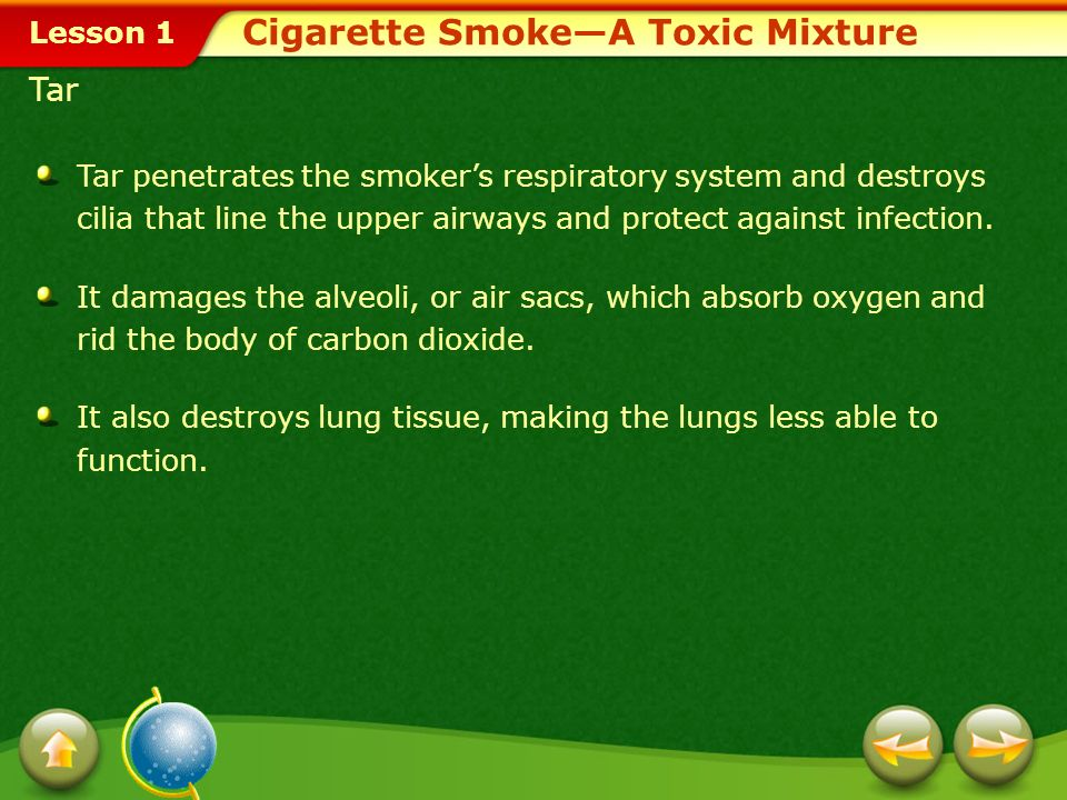 Cigarette Smoke—A Toxic Mixture