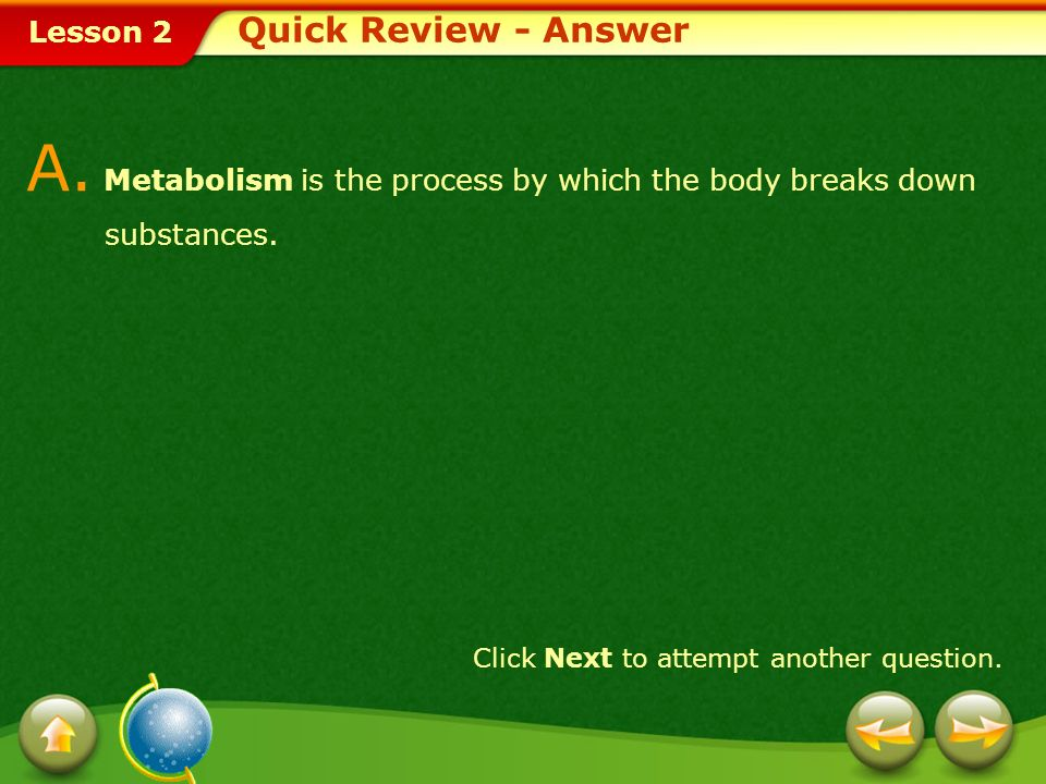 A. Metabolism is the process by which the body breaks down substances.