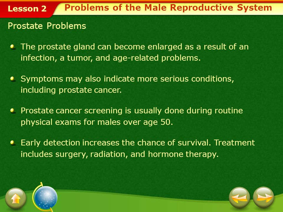 Problems of the Male Reproductive System