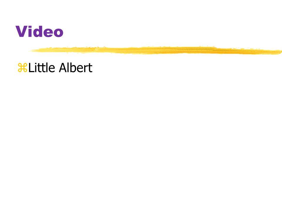 Video Little Albert