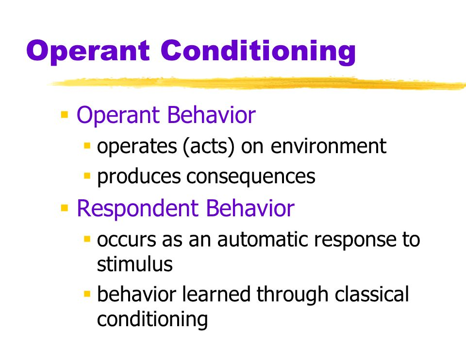 Operant Conditioning Operant Behavior Respondent Behavior