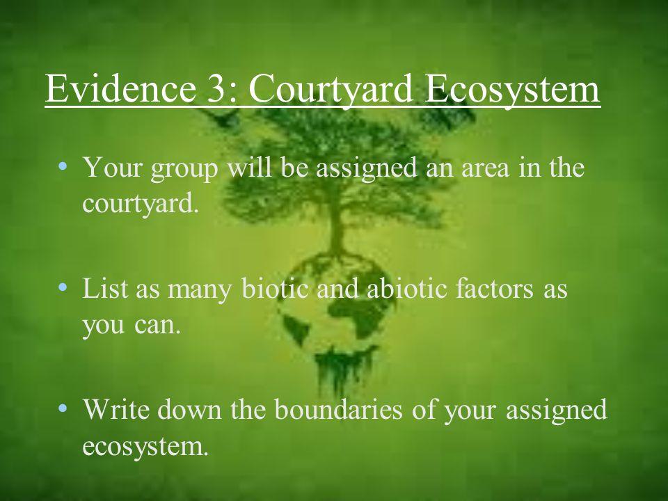 Evidence 3: Courtyard Ecosystem