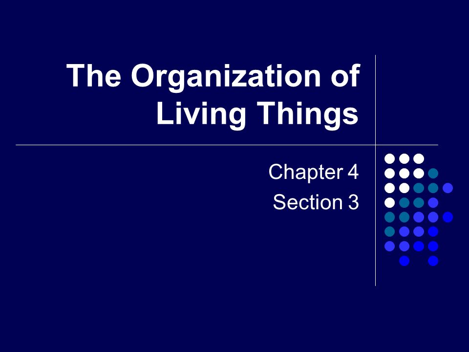 the living organization To change an organization from within, it helps to understand four basic circulatory systems, analogous to the channels of communication in a living body.