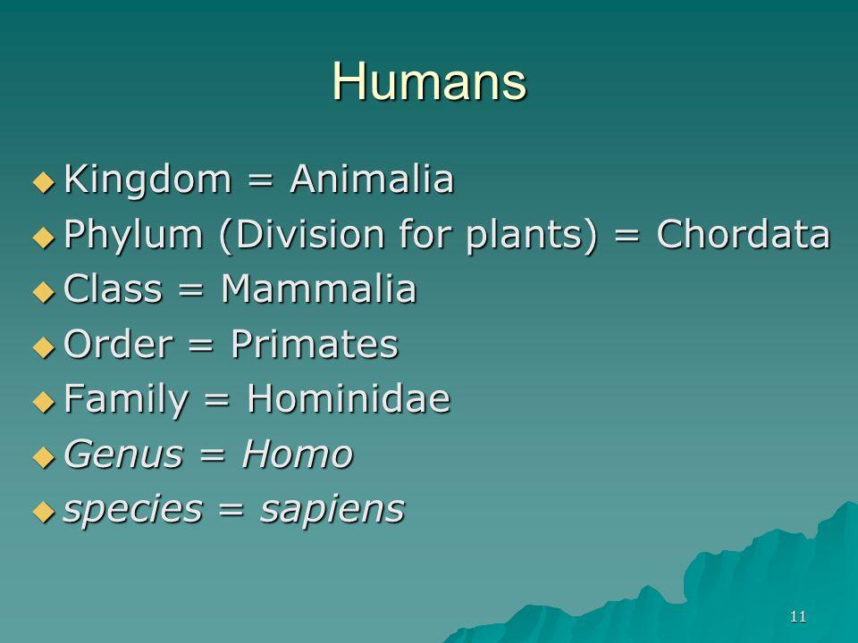Humans Kingdom = Animalia Phylum (Division for plants) = Chordata