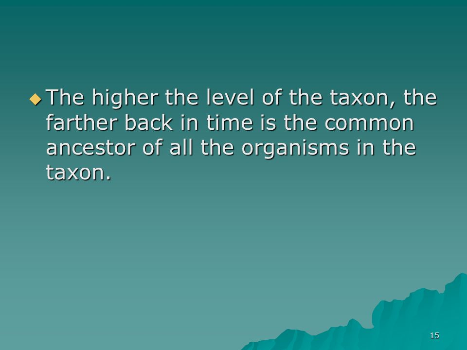 The higher the level of the taxon, the farther back in time is the common ancestor of all the organisms in the taxon.