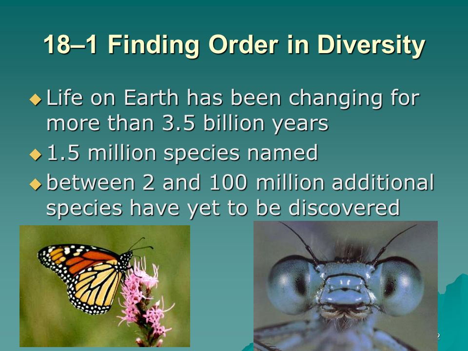 18–1 Finding Order in Diversity