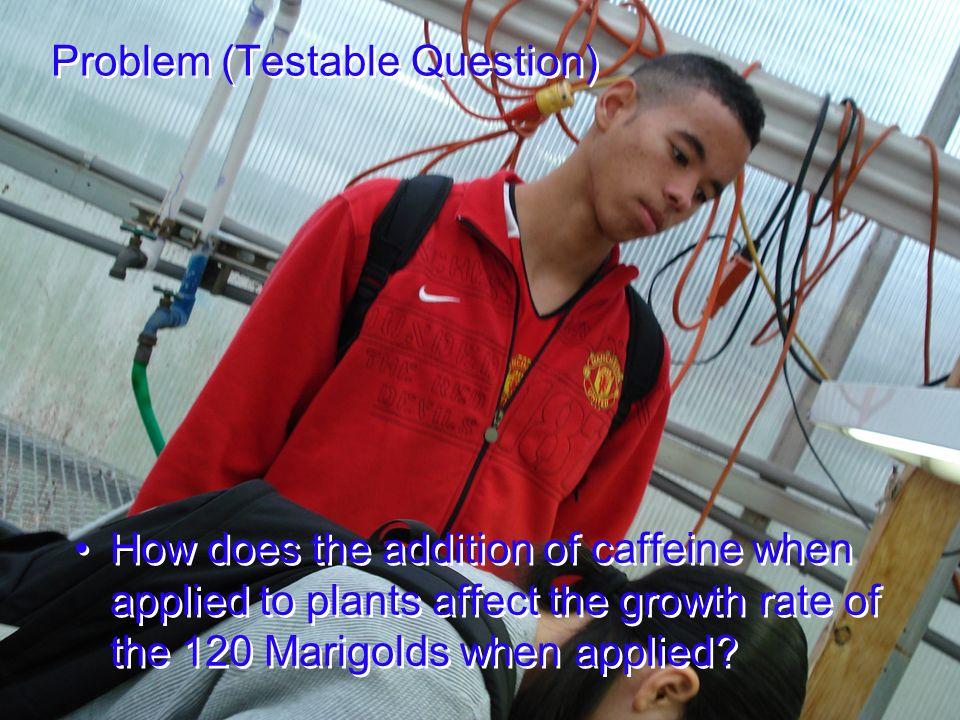 Problem (Testable Question)