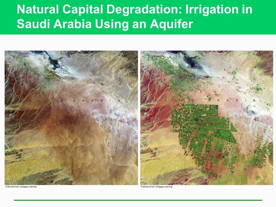 Natural Capital Degradation: Irrigation in Saudi Arabia Using an Aquifer
