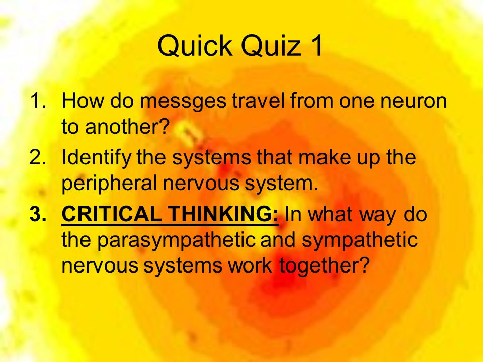 critical thinking questions about the nervous system Multiple choice anatomy and physiology questions on muscle fiber contraction and relaxation skip to content  central nervous system  critical thinking:.