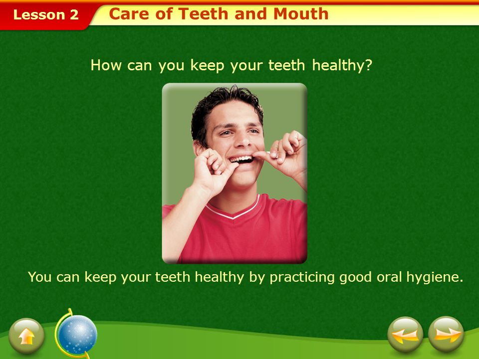 Care of Teeth and Mouth How can you keep your teeth healthy