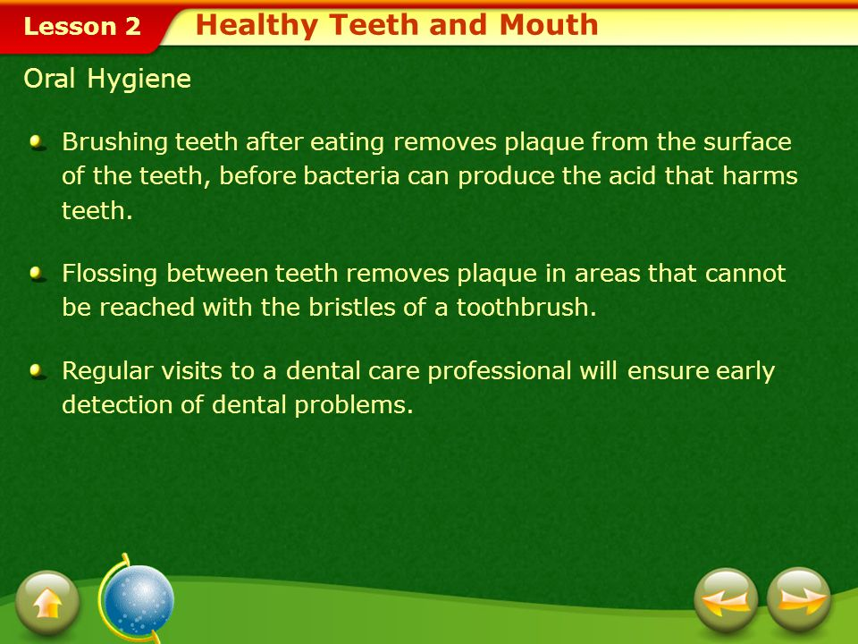 Healthy Teeth and Mouth