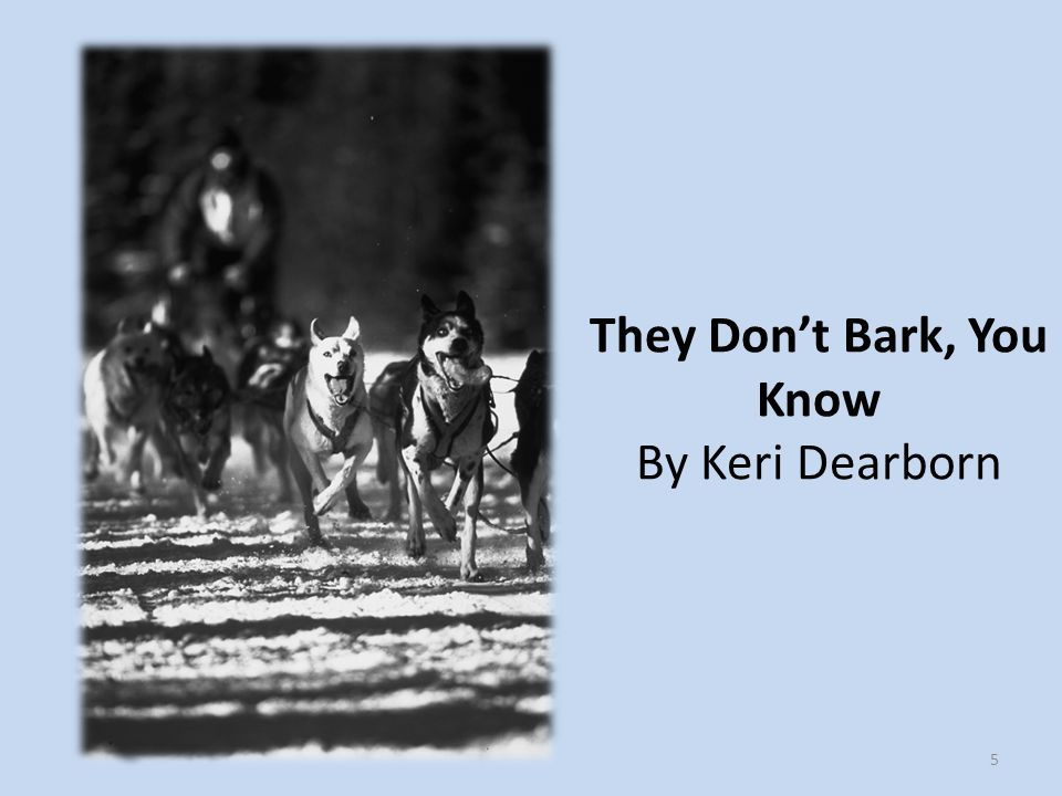They Don't Bark, You Know By Keri Dearborn