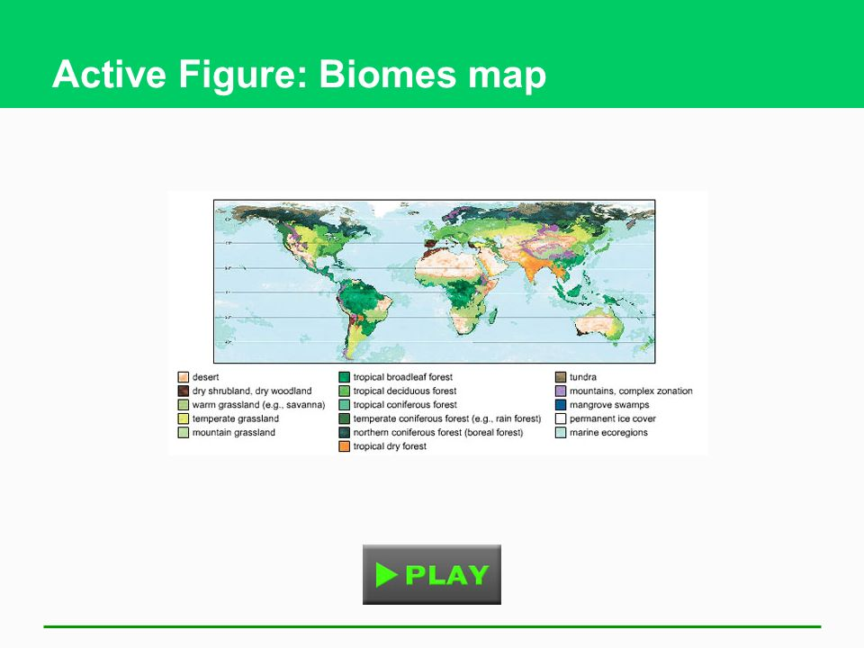 Active Figure: Biomes map