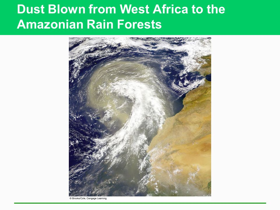 Dust Blown from West Africa to the Amazonian Rain Forests