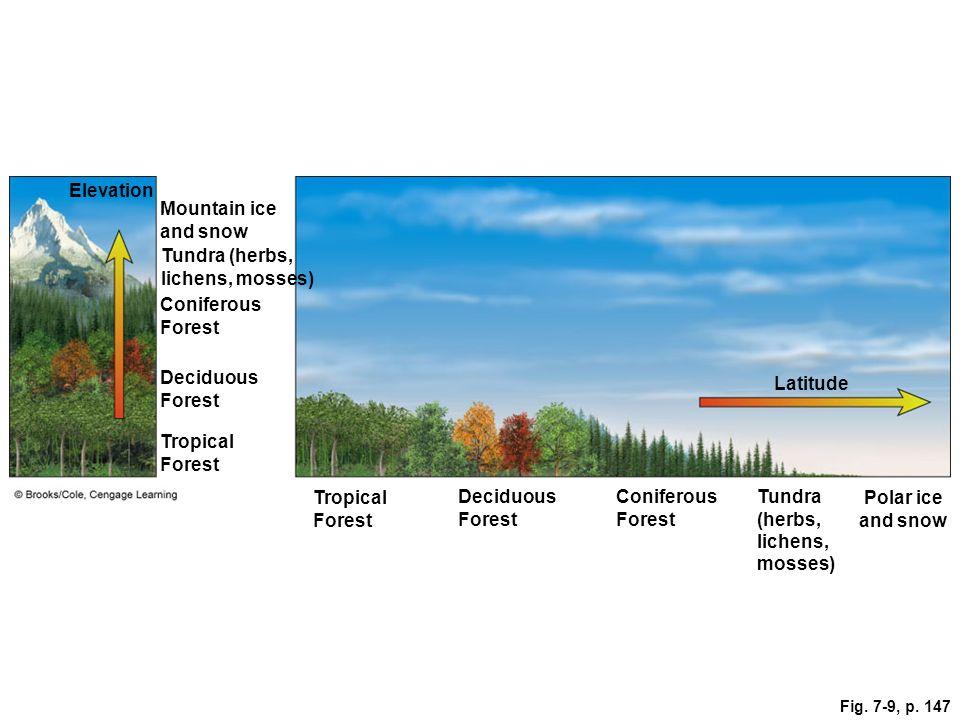 Tundra (herbs, lichens, mosses)