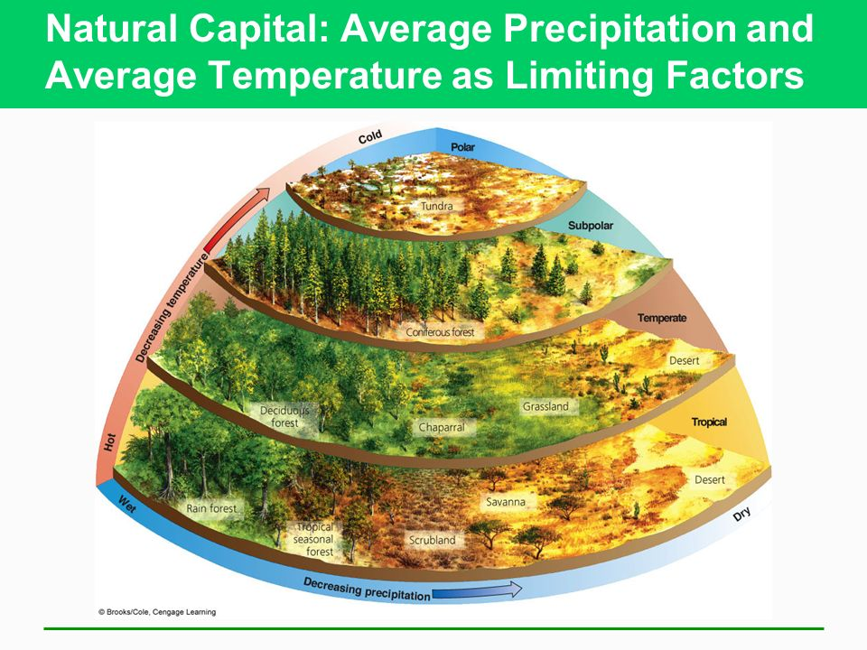 Natural Capital: Average Precipitation and Average Temperature as Limiting Factors