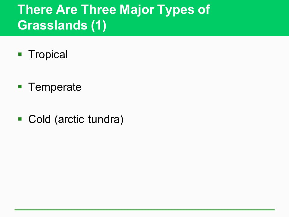 There Are Three Major Types of Grasslands (1)