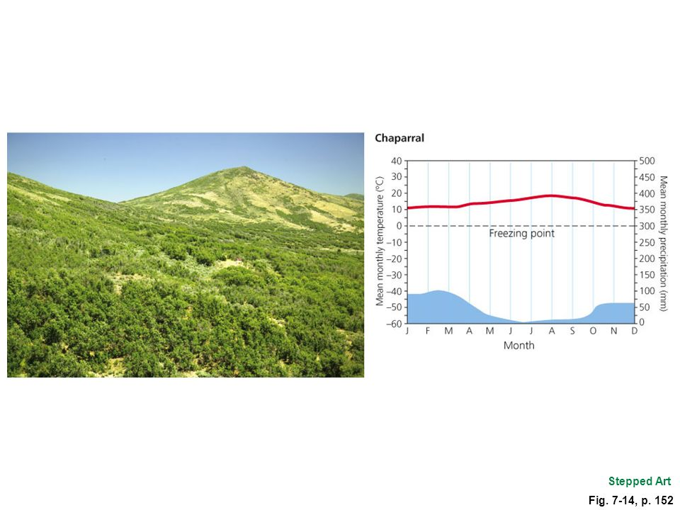 Figure 7.14 Chaparral vegetation in the U.S. state of Utah and a typical climate graph. Stepped Art.