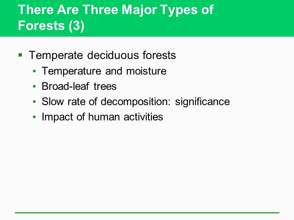 Temperate deciduous forest
