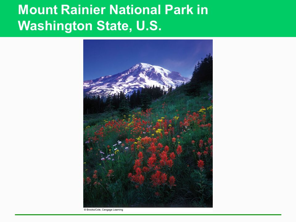 Mount Rainier National Park in Washington State, U.S.
