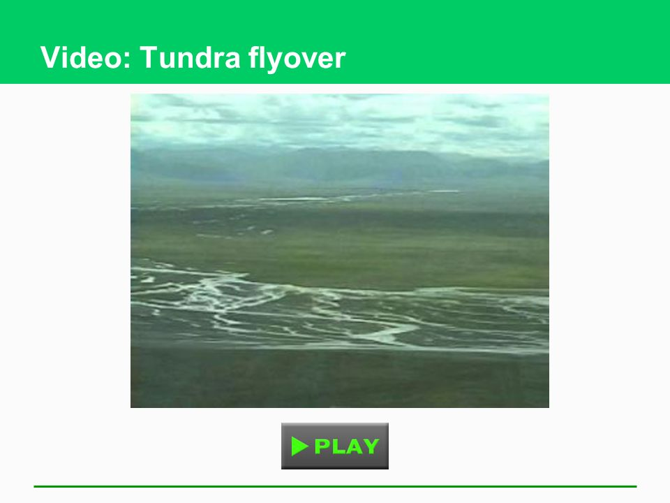 Video: Tundra flyover
