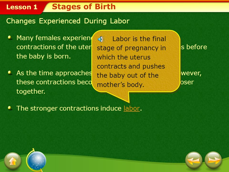Stages of Birth Changes Experienced During Labor