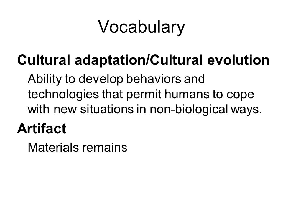 Vocabulary Cultural adaptation/Cultural evolution Artifact