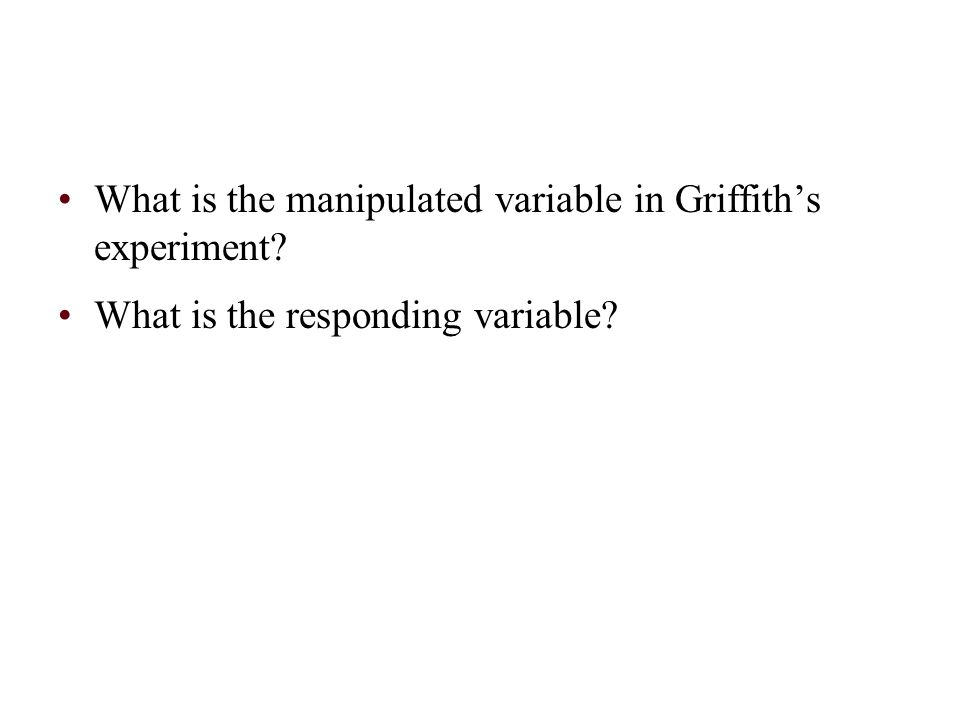 What is the manipulated variable in Griffith's experiment