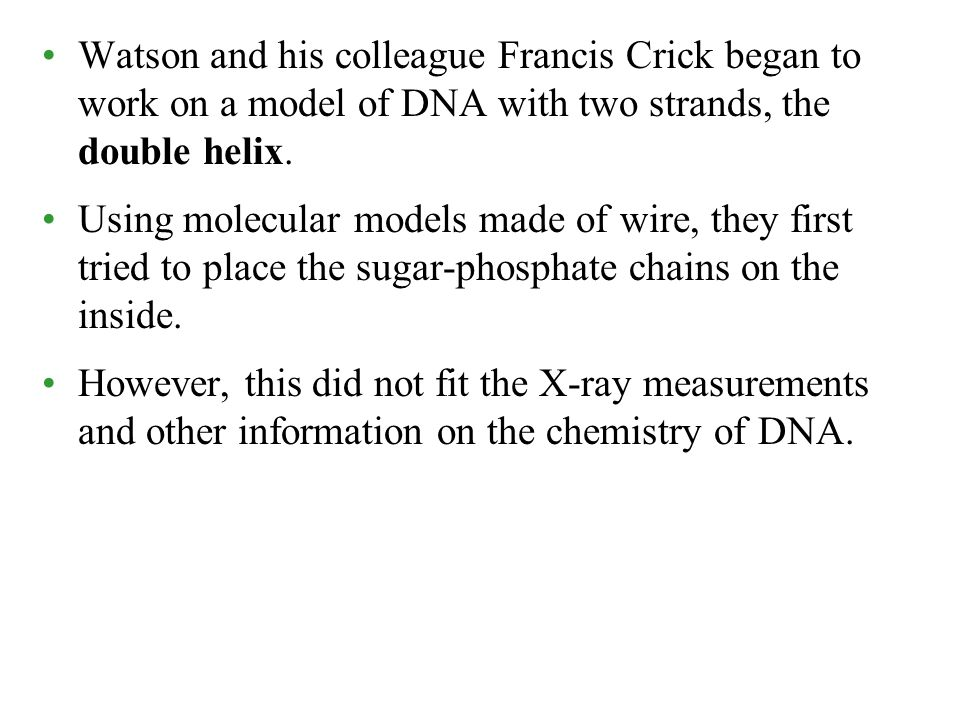 Watson and his colleague Francis Crick began to work on a model of DNA with two strands, the double helix.