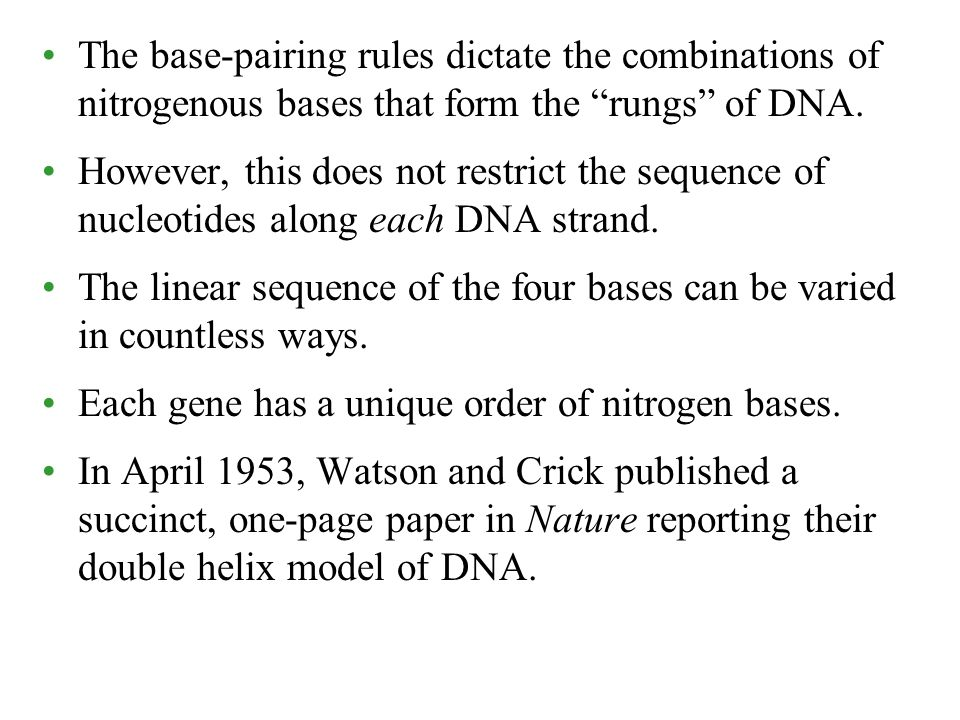 The base-pairing rules dictate the combinations of nitrogenous bases that form the rungs of DNA.