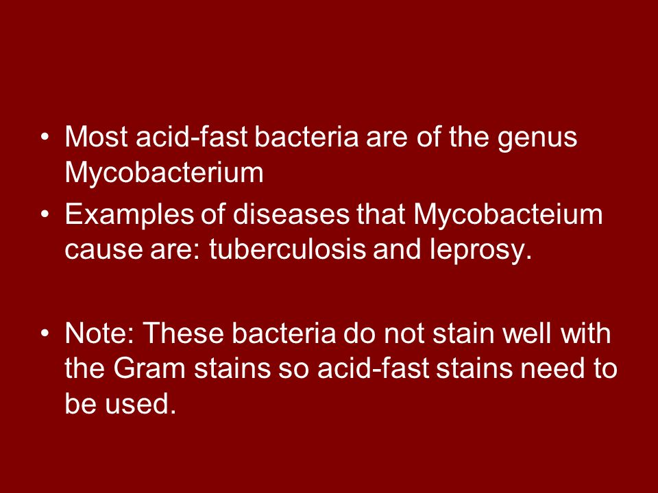 Most acid-fast bacteria are of the genus Mycobacterium