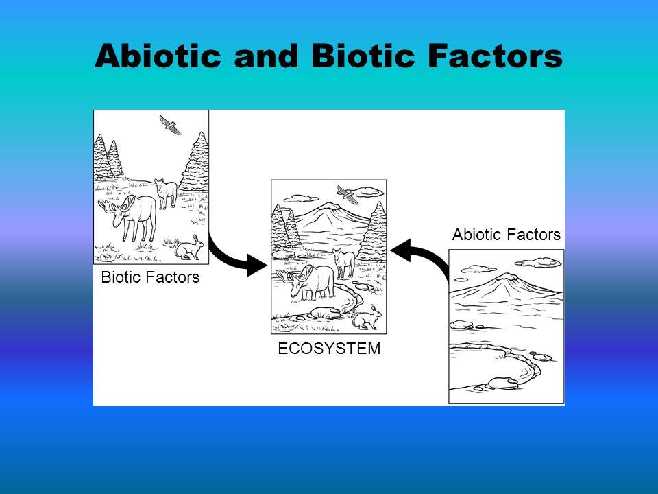 Abiotic and Biotic Factors
