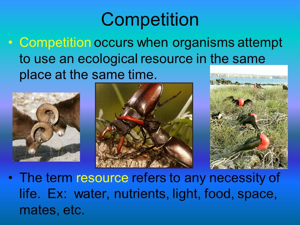 Competition Competition occurs when organisms attempt to use an ecological resource in the same place at the same time.
