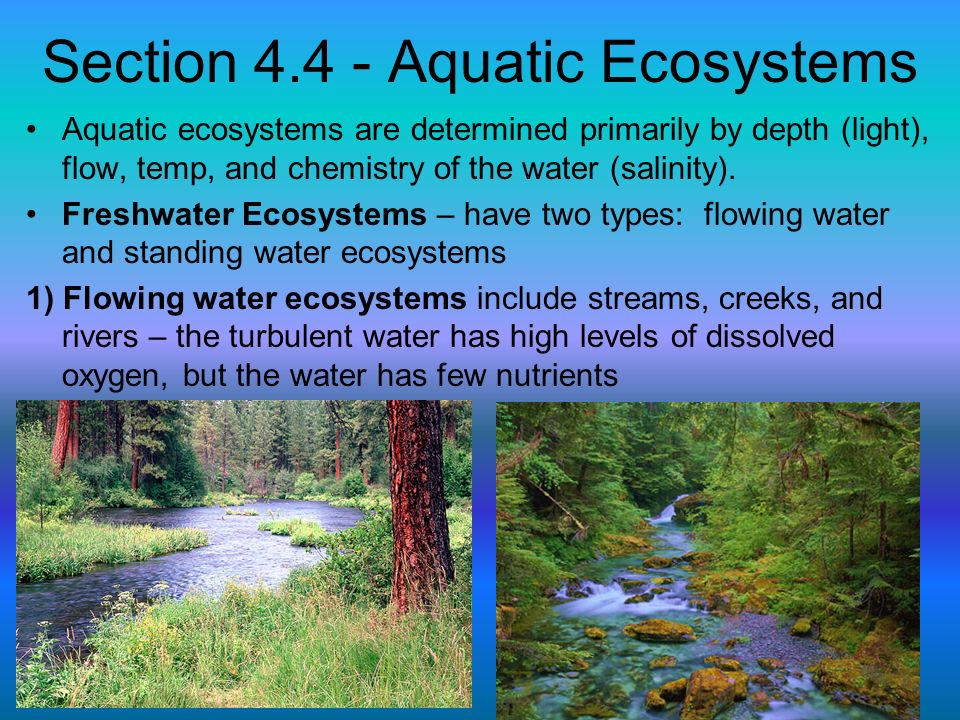 Section 4.4 - Aquatic Ecosystems