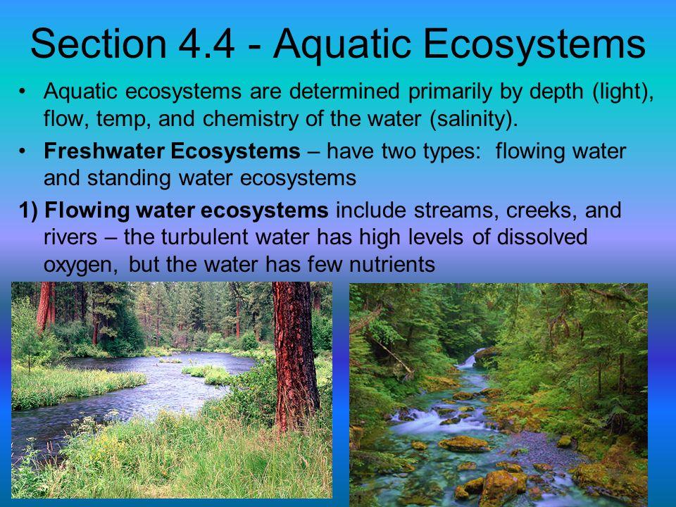 Section 4.4 - Aquatic Ecosystems