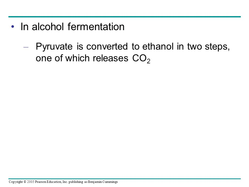 In alcohol fermentation