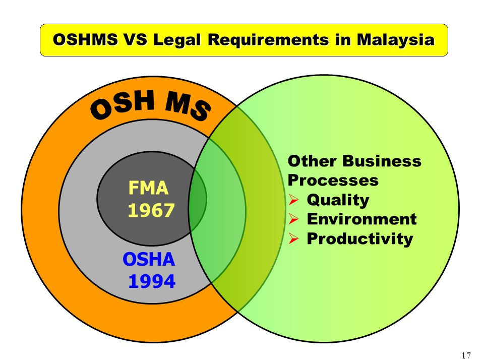 The Business Environment of Malaysia