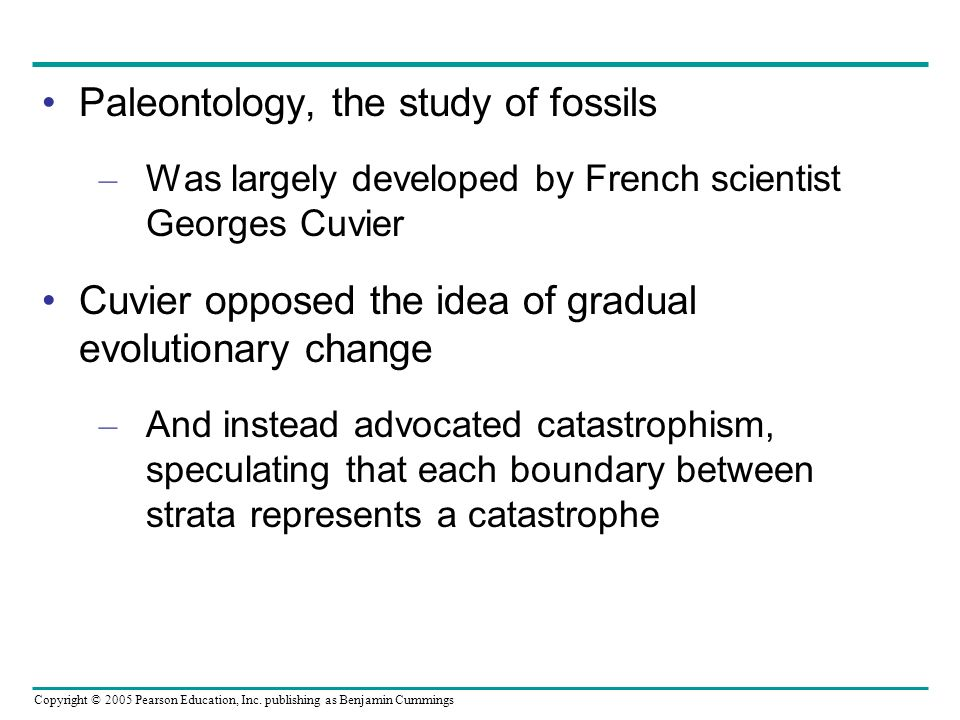 Paleontology, the study of fossils