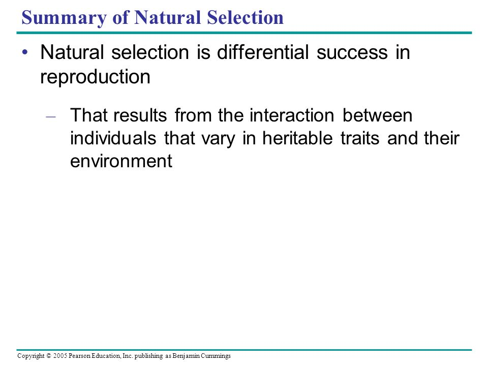 Summary of Natural Selection