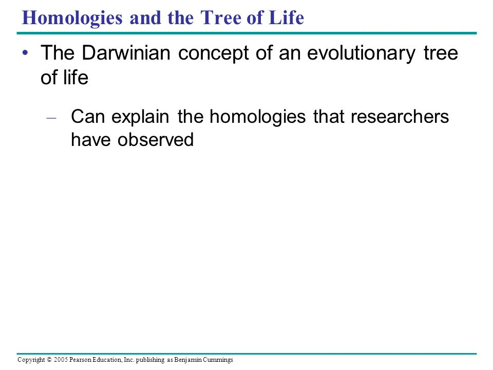Homologies and the Tree of Life